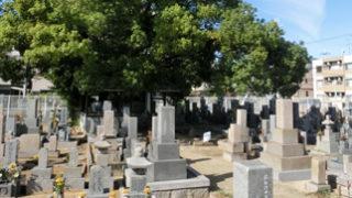 西宮市髙木墓地の墓地内写真